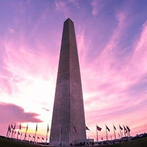 Bachelorette Ideas DC